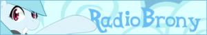 button_Radiobrony